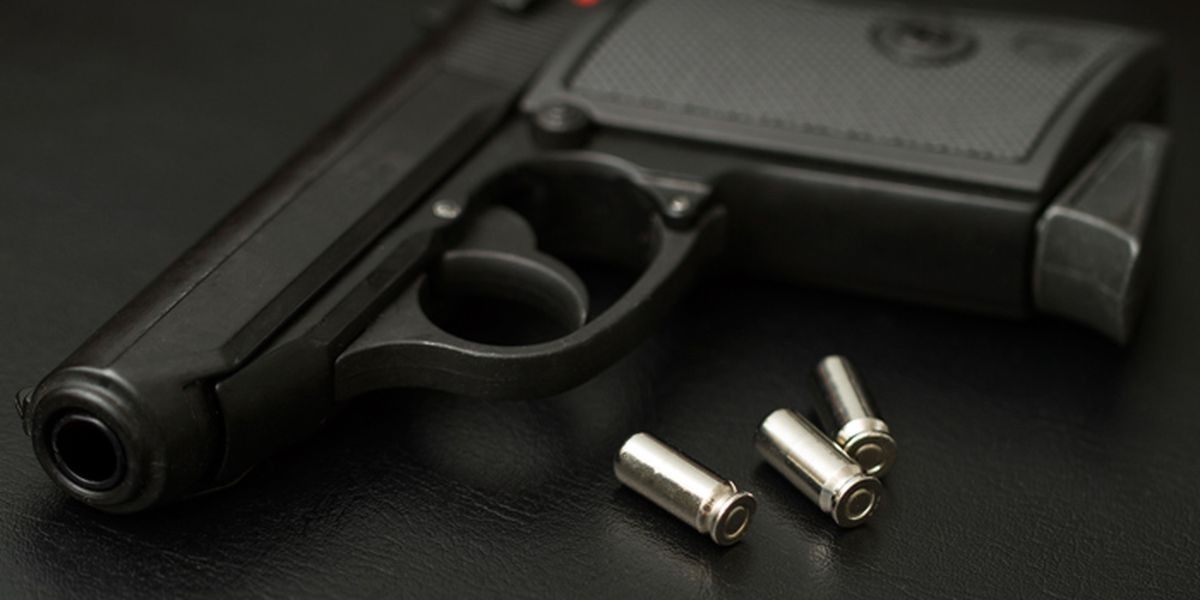 Police: 6-year-old among 4 accused in theft of handguns