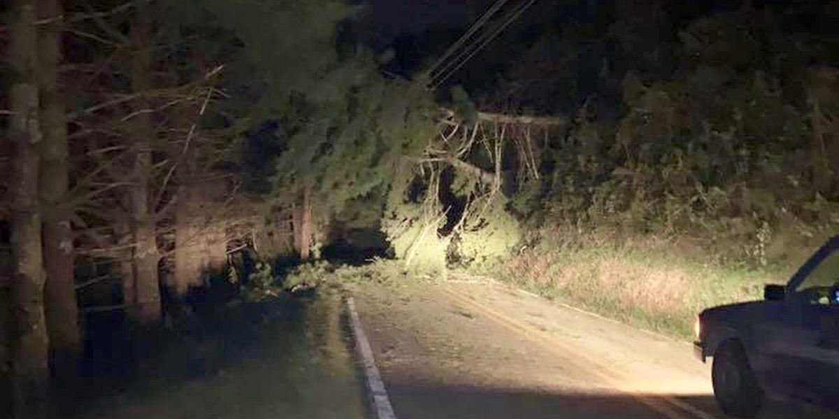 Strong winds bring mass power outages across the mountains