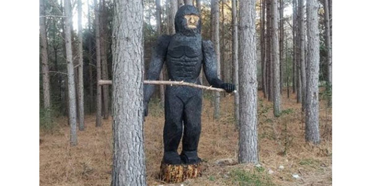 People claiming to see red-eyed Bigfoot at night in NC woods weren't imagining things, county says