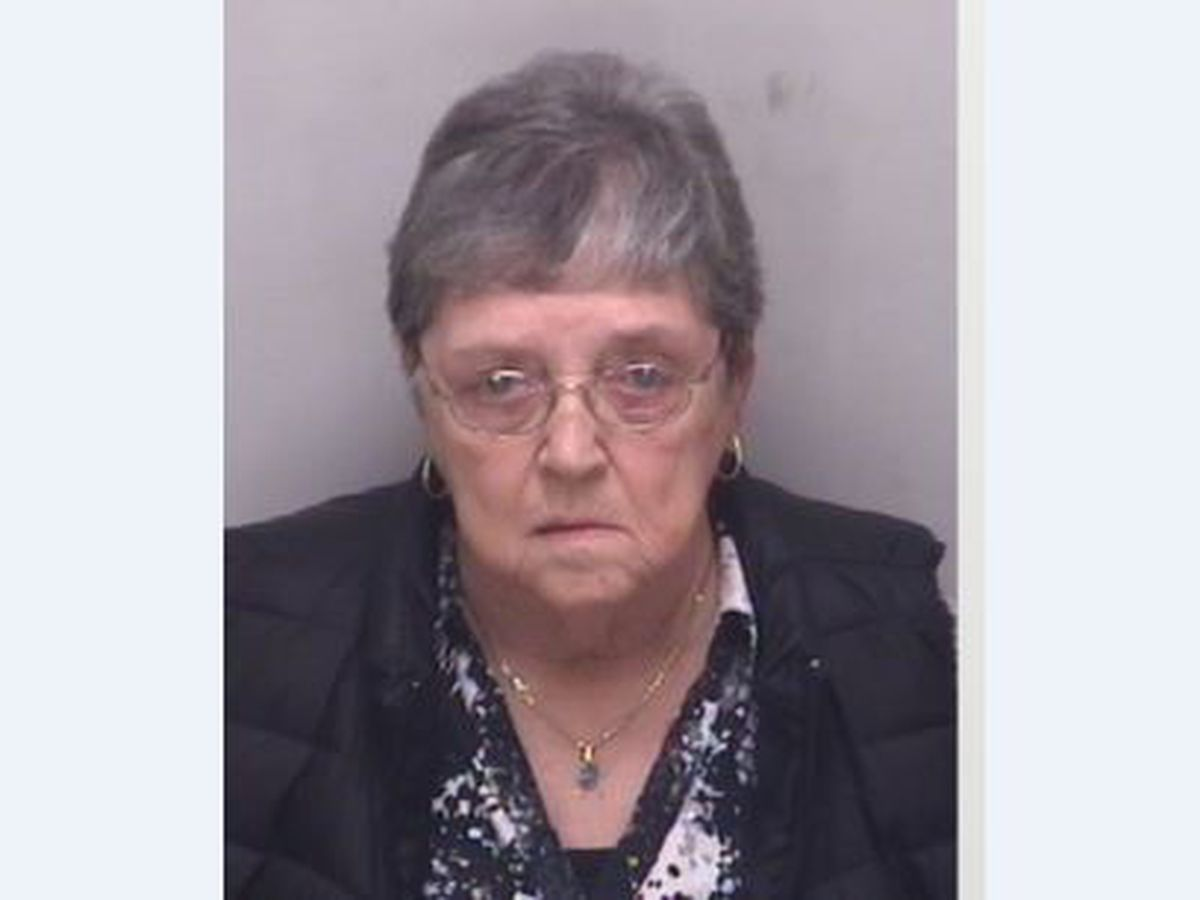 School bus driver charged with assault of 7-year-old student with autism