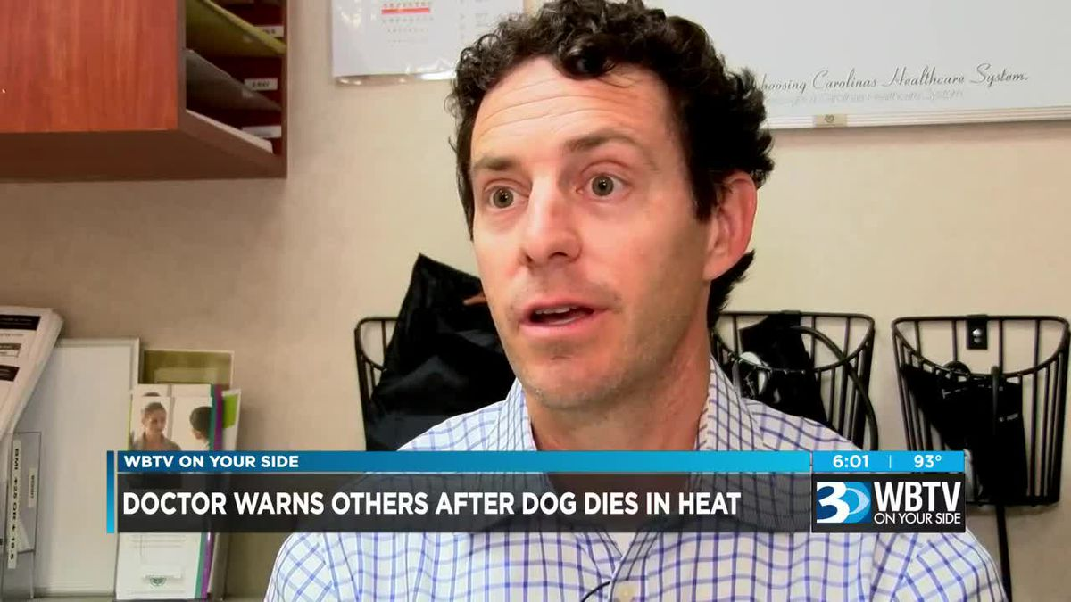 Doctor warns other after dog dies in heat