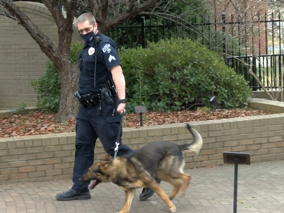 Salisbury Police investigating allegation of mistreatment of K-9 by officer