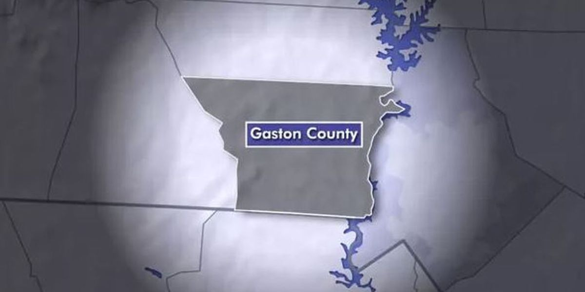 Rabies case confirmed in Gaston County