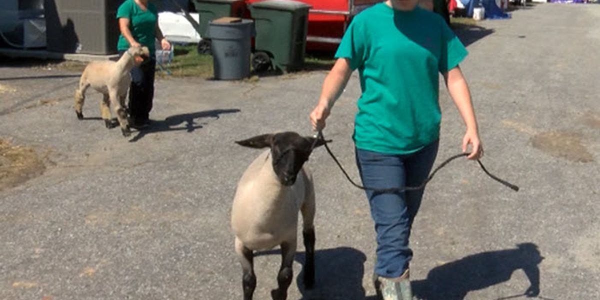 Rowan County Fair finally back open after closing due to Florence