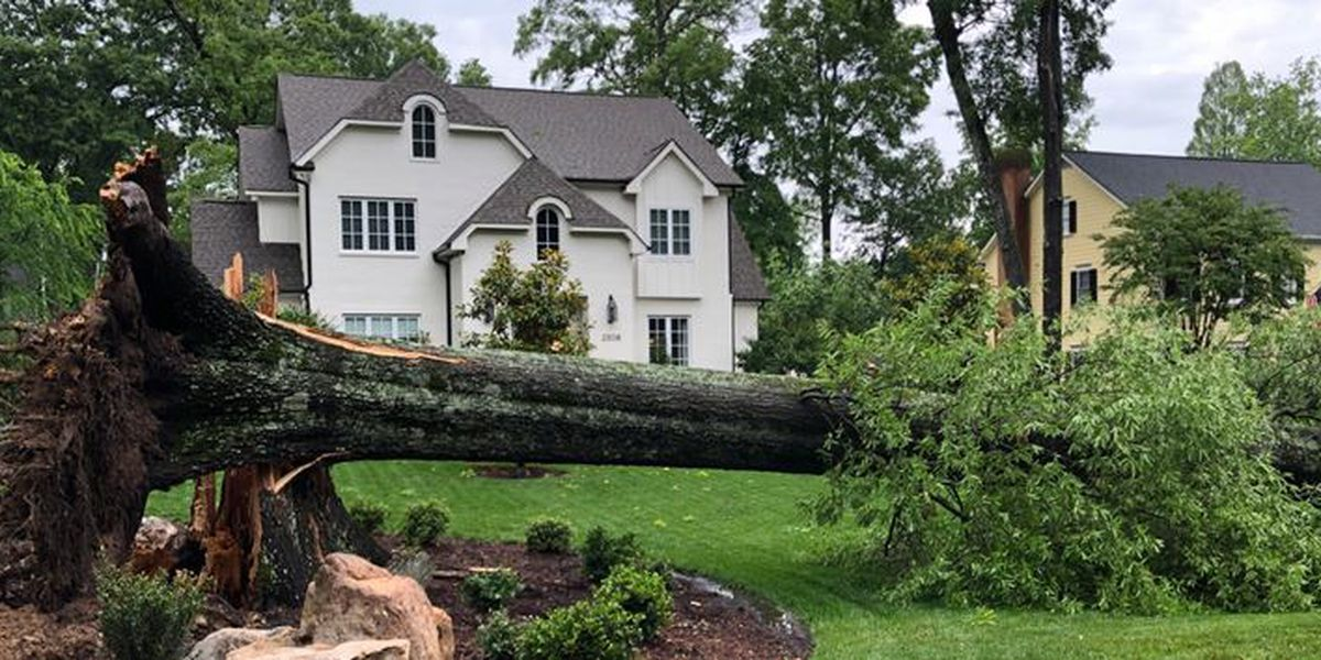 Strong thunderstorms leave damage in Charlotte-area neighborhoods