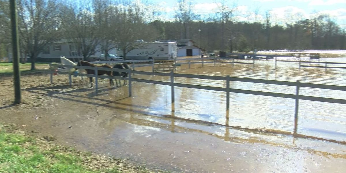 Lancaster County creek overflows, floods family's 22 acres of land