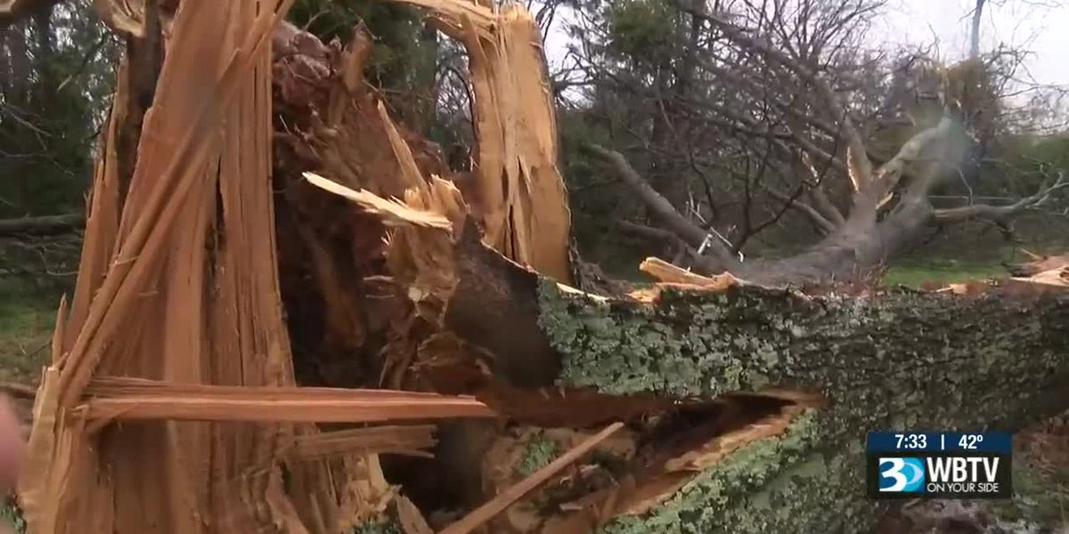 Multiple confirmed tornadoes rip through WBTV viewing area Thursday