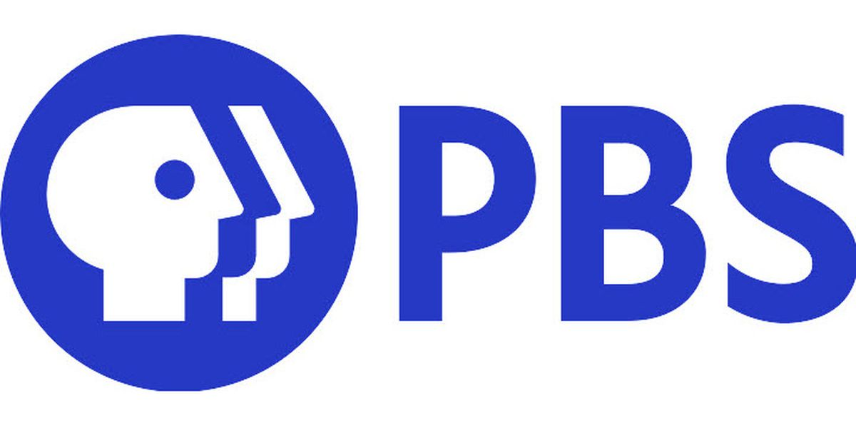 PBS lawyer resigns after being caught in Veritas sting