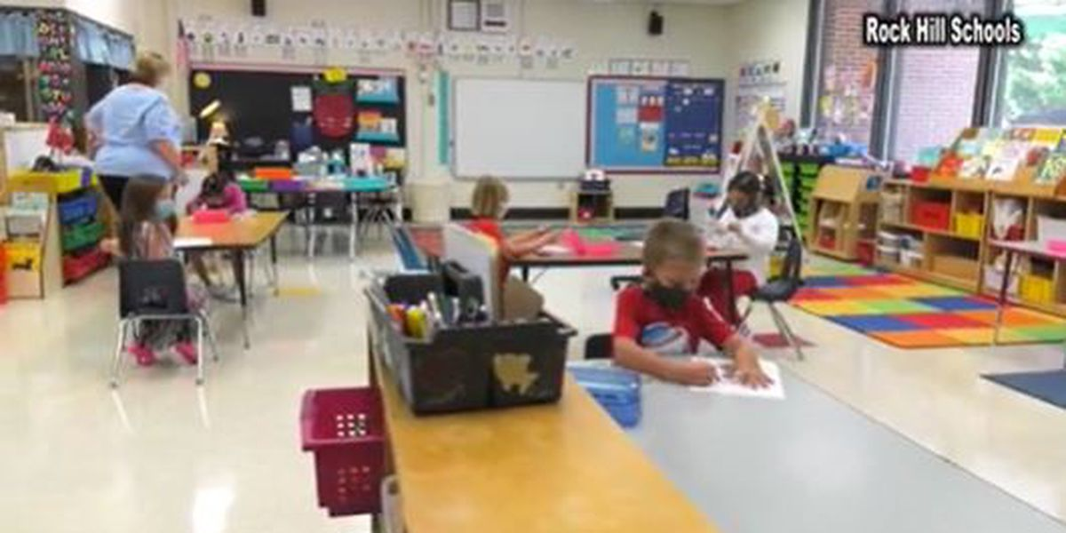 S.C. teachers ready to get vaccine in Phase 1B but want to hold off on reopening