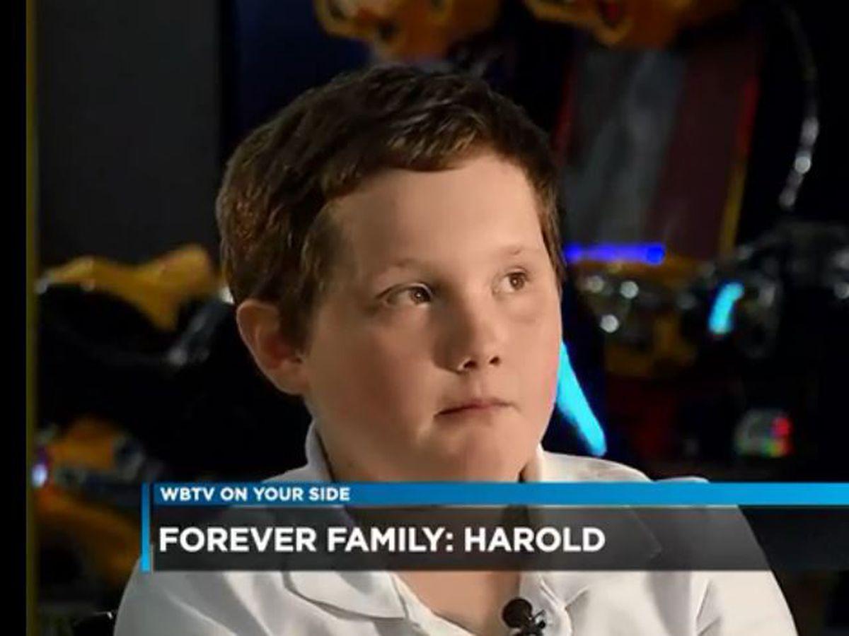Forever Family- Meet Harold
