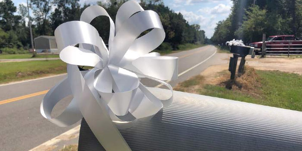 White ribbons, bows on mailboxes line the route of murdered SC mail carrier