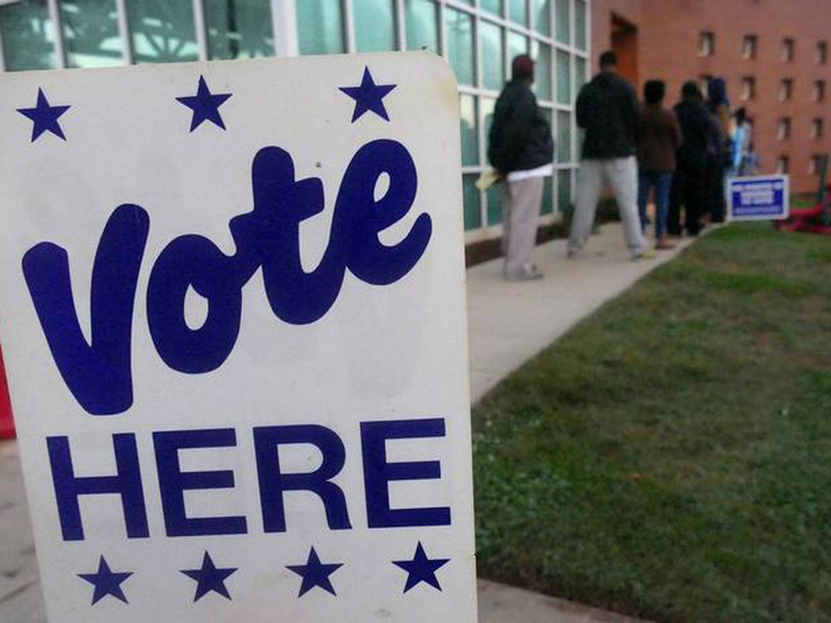 Election 2020: Voting in Mecklenburg County