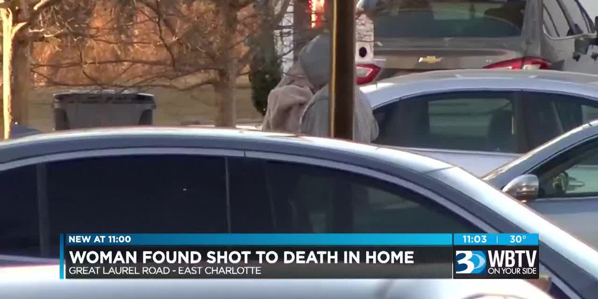 Woman found shot to death in home