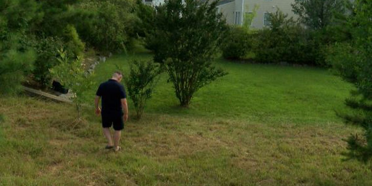 Charlotte man says he's being targeted by Code Enforcement, cited repeatedly for overgrown grass